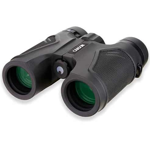Best Digital Binoculars for Travel