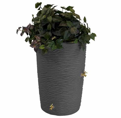 Best Rain Barrel Under Budget
