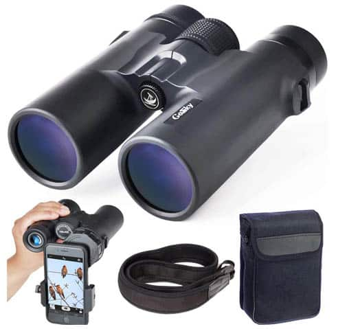 Best Lightweight Binoculars for Travel
